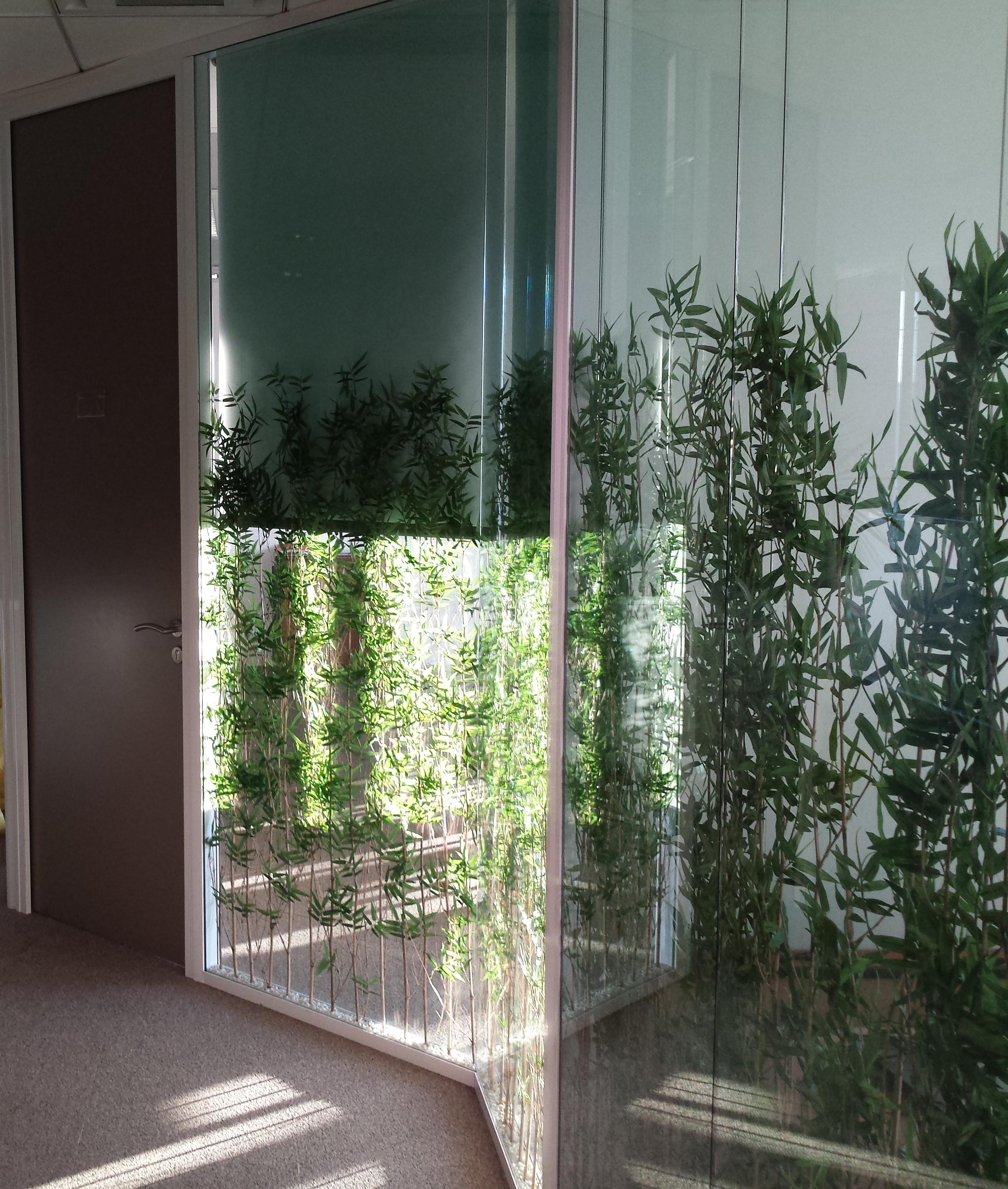 Cloison Plante cloisons-vitree-plante-espace-cloisons (2) | espace cloisons alu ile