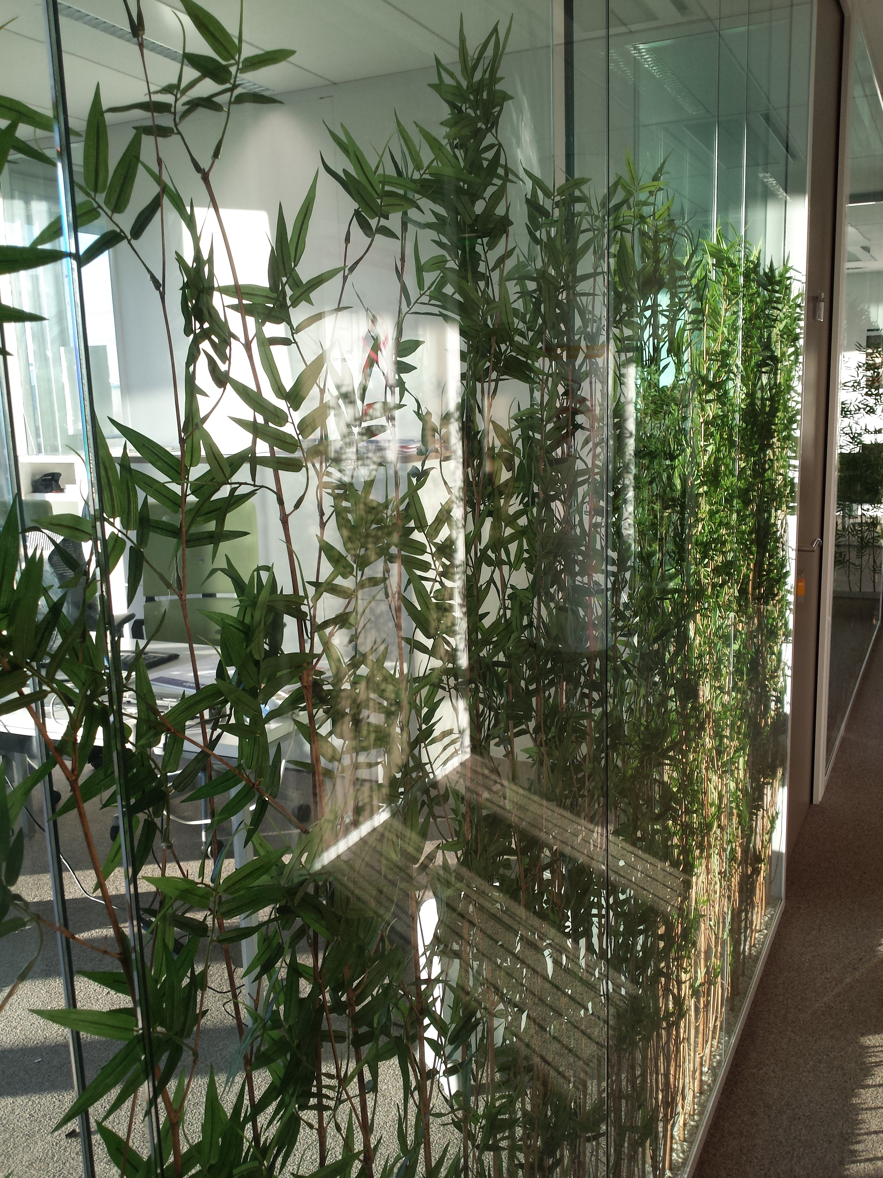 Cloison Plante cloisons-vitree-plante-espace-cloisons (4) | espace cloisons alu ile