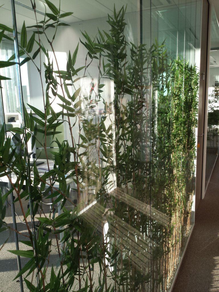Cloisons-vitree-plante-espace-cloisons